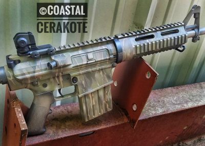 AR10 camo hunter