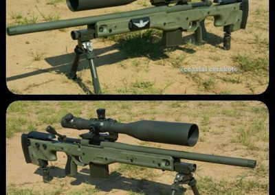 Long range precision rifle Reminton